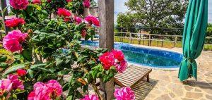 Снимка 3 - басейн в къща за гости Свети Димитър, село Веселие