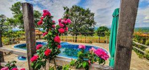 Снимка 2 - басейн в къща за гости Свети Димитър, село Веселие